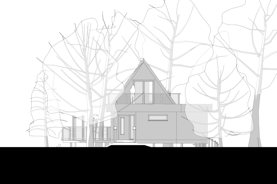 Brinsop Court Treehouses, Rear Elevation Trees, Crown and Canopy